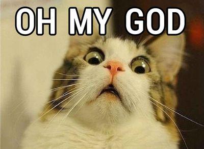 Oh-My-God-Cat.jpg