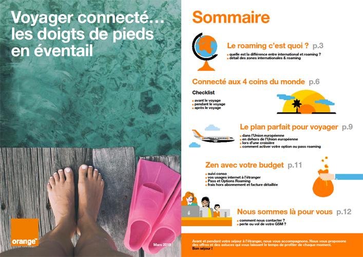 Traveller Guide (FR).png